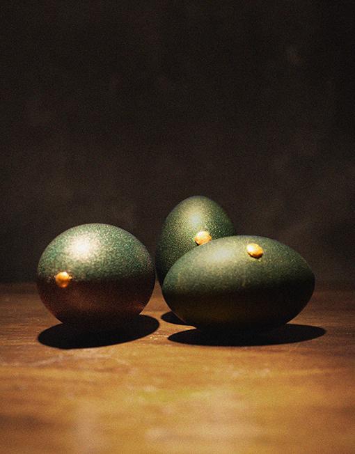 EMU eggs x 3
